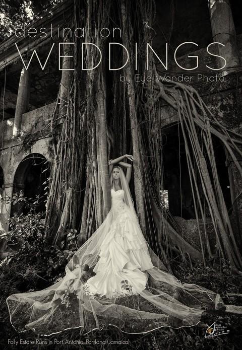 Bride in Port Antonio, Portland, Jamaica at Folly Estate Ruins in Caribbean Sea in tree