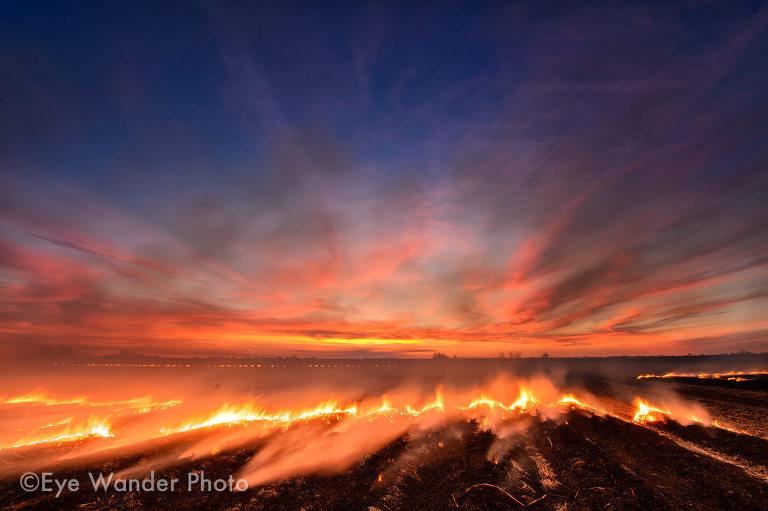 Sugar Cane Field on Fire
