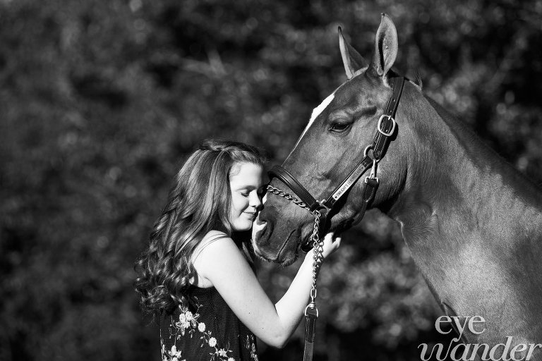 MField_horse_021